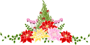 poinsettia20141128-icon1